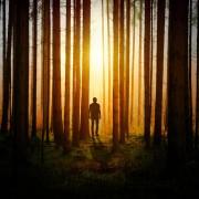 Mensch im Wald